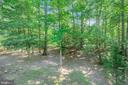 Over 1/2 acre Wooded Lot - 111 SILVER SPRING DR, LOCUST GROVE