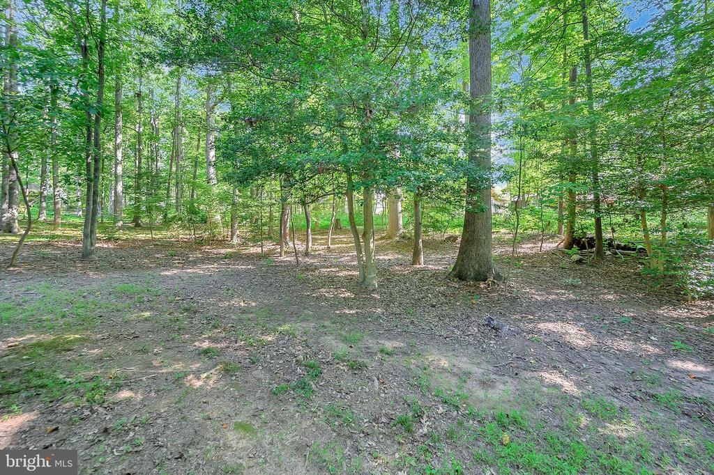 View into Backyard - 111 SILVER SPRING DR, LOCUST GROVE