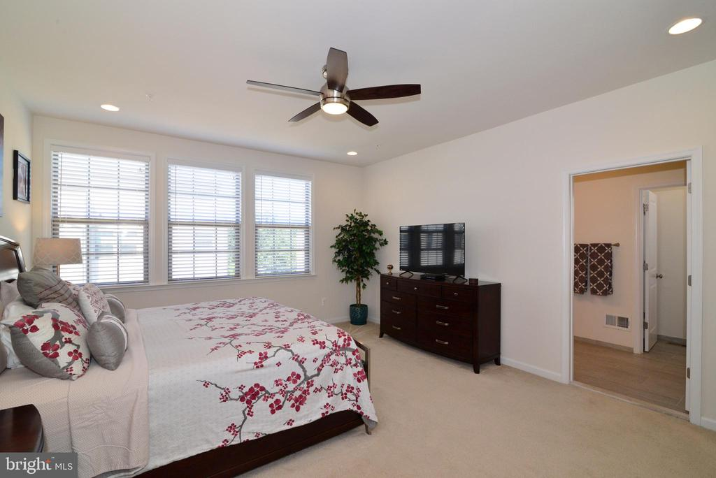 Master bedroom - 23398 EPPERSON SQ, BRAMBLETON