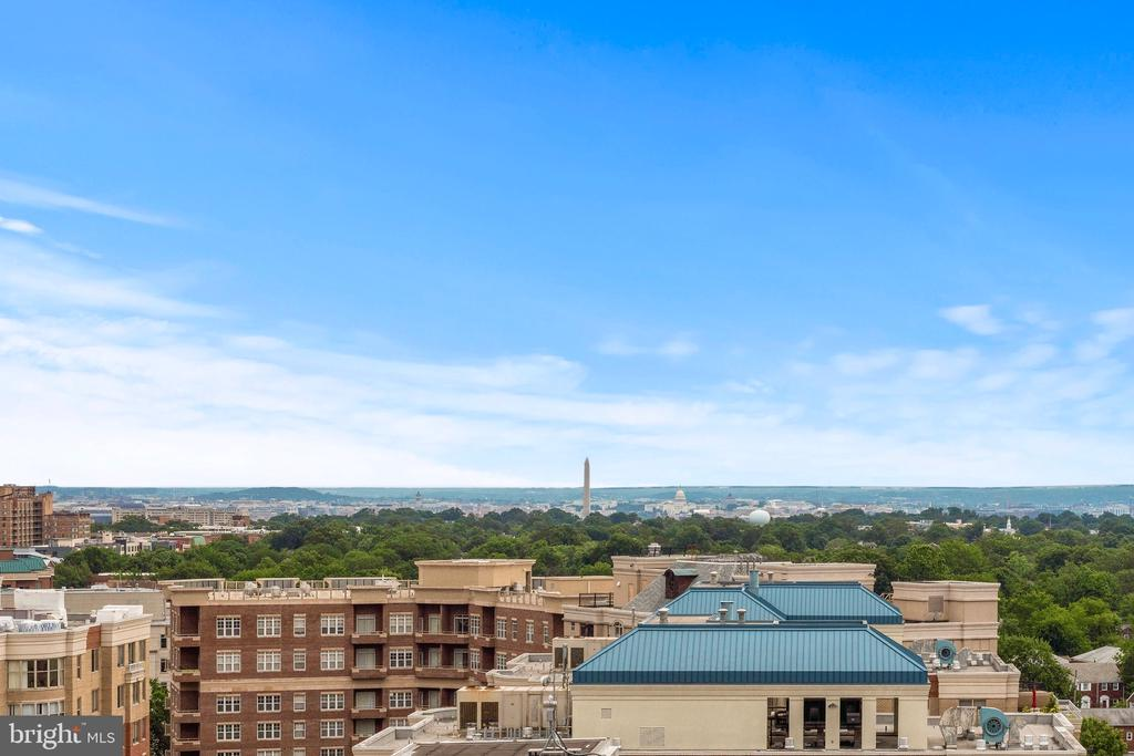 Stunning views of the iconic DC skyline - 888 N QUINCY ST #1506, ARLINGTON