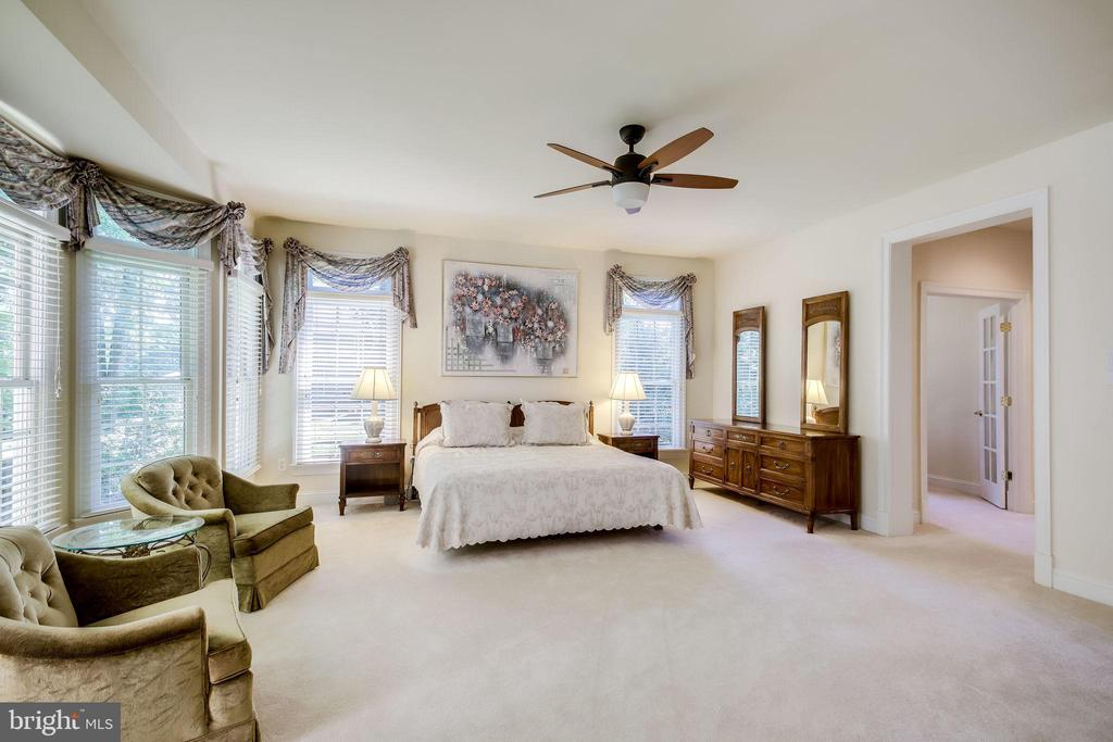 Main Level Master Bedroom suite - 11604 TORI GLEN CT, HERNDON