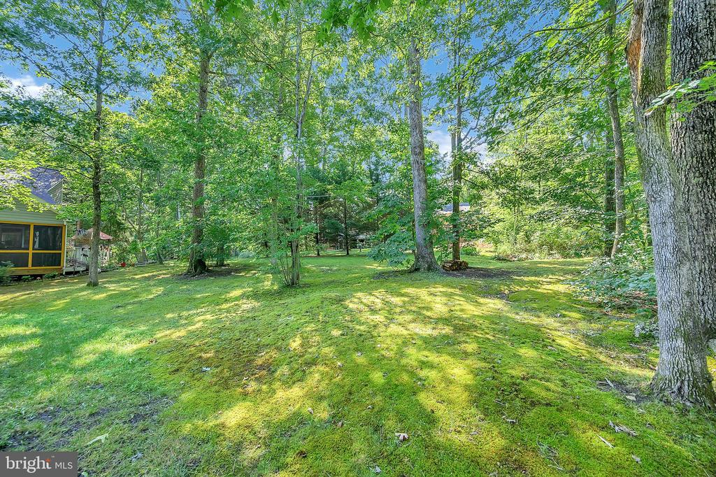 privacy buffer yard - 1221 LAKEVIEW PKWY, LOCUST GROVE