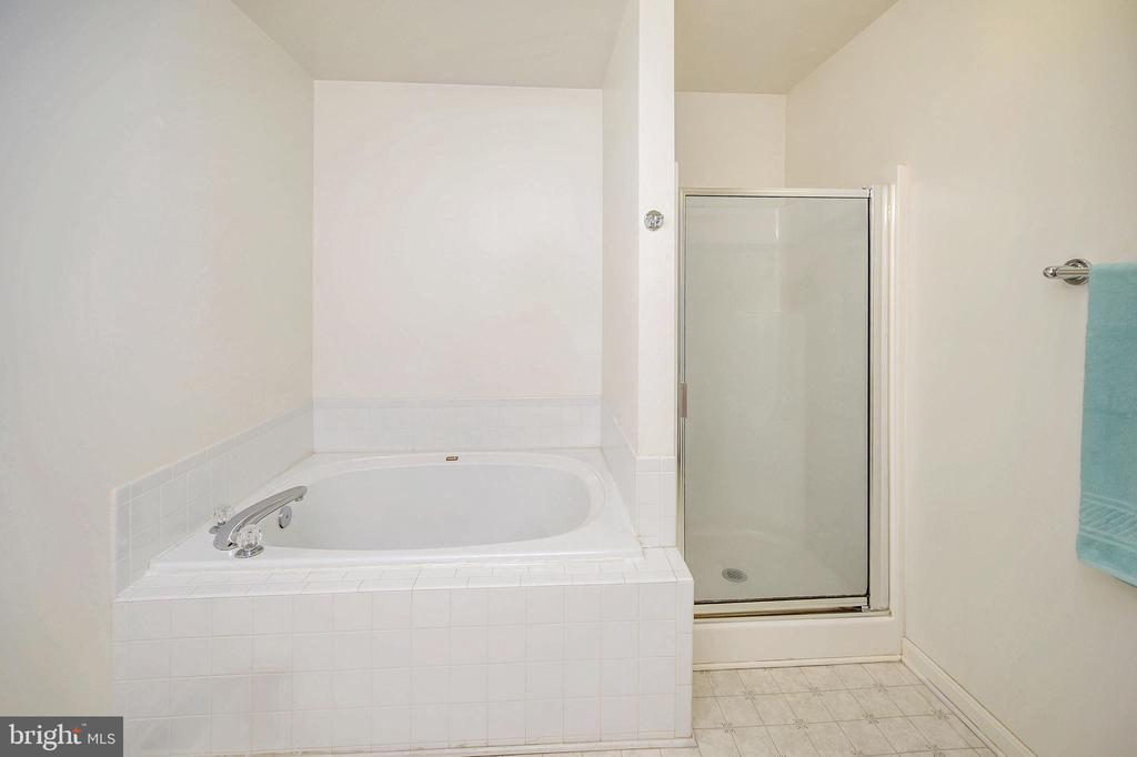 Master bath soak tub & separate shower - 1221 LAKEVIEW PKWY, LOCUST GROVE