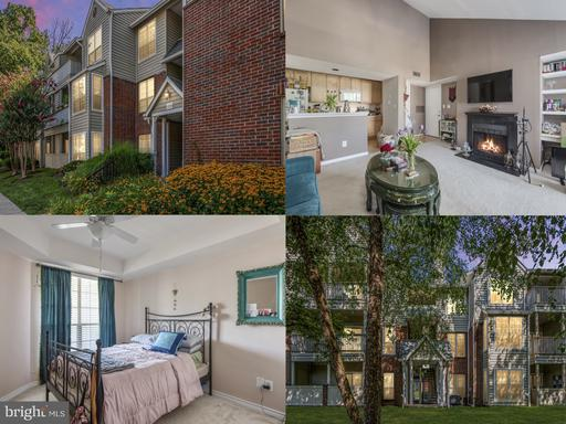 12150 PENDERVIEW TER #1335