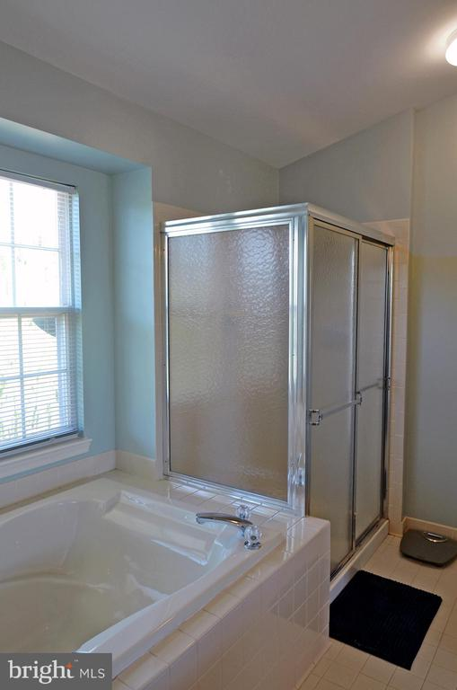 Owner's BA w/Separate Shower - 2314 COLTS BROOK DR, RESTON