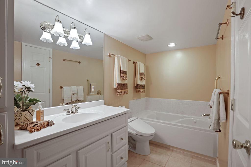 Master Bath : Whirlpool Tub and Toilet/Bidet - 1800 OLD MEADOW RD #1106, MCLEAN