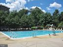 Take a swim in Olympic Pool - 1800 OLD MEADOW RD #1106, MCLEAN