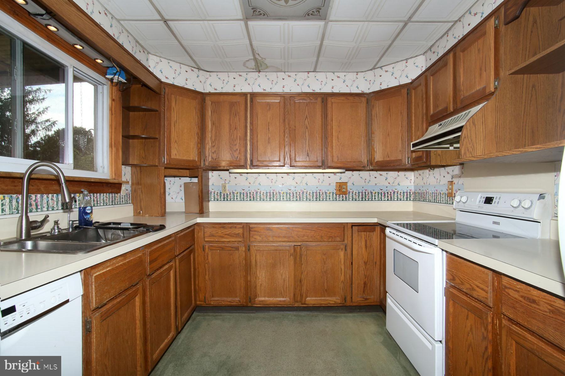 Modern kitchen includes appliances.