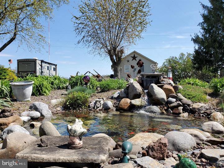 Koi Pond with Goldfish