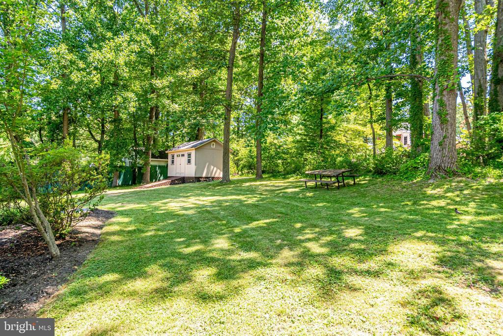 View from house to shed in back yard - 5708 GLENWOOD CT, ALEXANDRIA