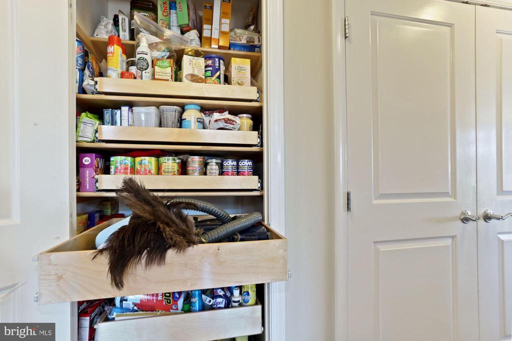 Closet converted to panty - 1000 N RANDOLPH ST #809, ARLINGTON