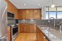 Granite counters and tile backsplash - 1000 N RANDOLPH ST #809, ARLINGTON