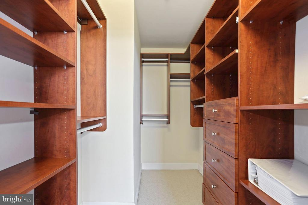 Master bedroom great closet! - 3600 S GLEBE RD #823W, ARLINGTON