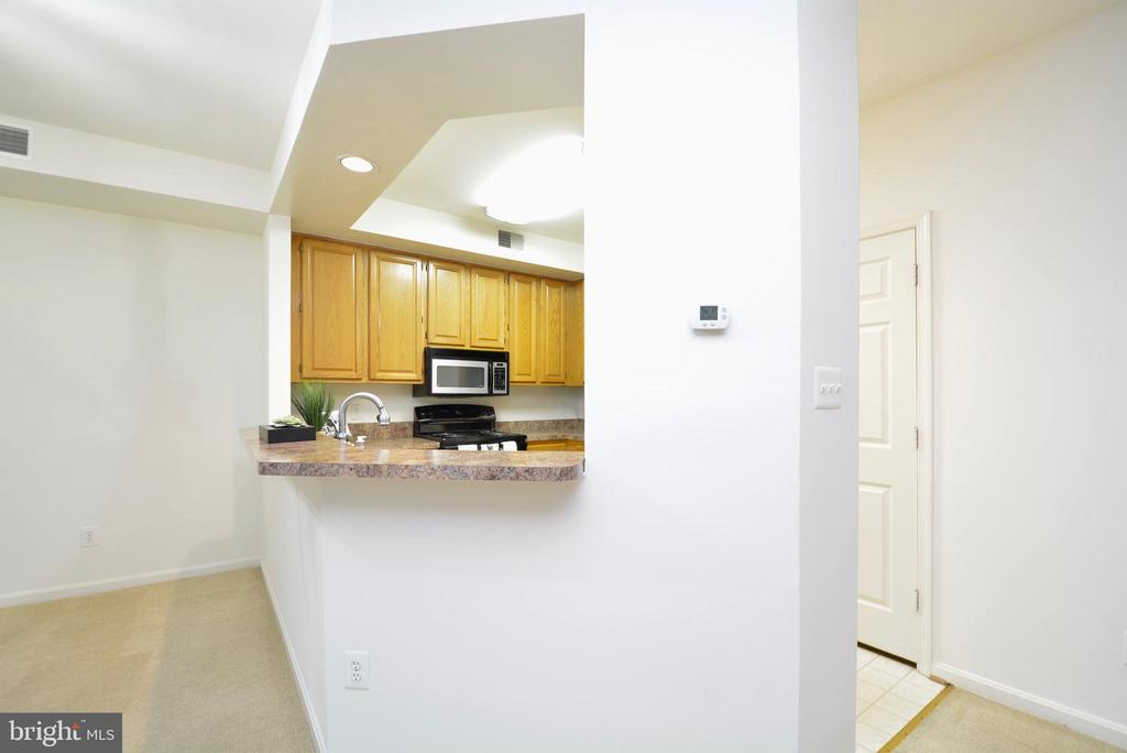 Still another view from outside ofthe kitchen area - 7004 ELLINGHAM CIR #45, ALEXANDRIA