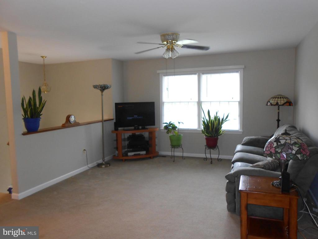 Living Room - Ceiling Fan/Light - 5334 DICKERSON RD, PARTLOW