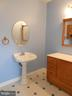 Lower Level Full Bath - 5334 DICKERSON RD, PARTLOW