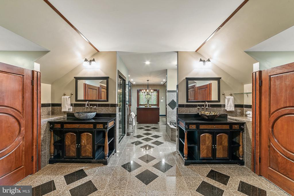 Master Bath:His/Hers sinks & toilets - 19200 ORCHARD MANOR LN, LEESBURG