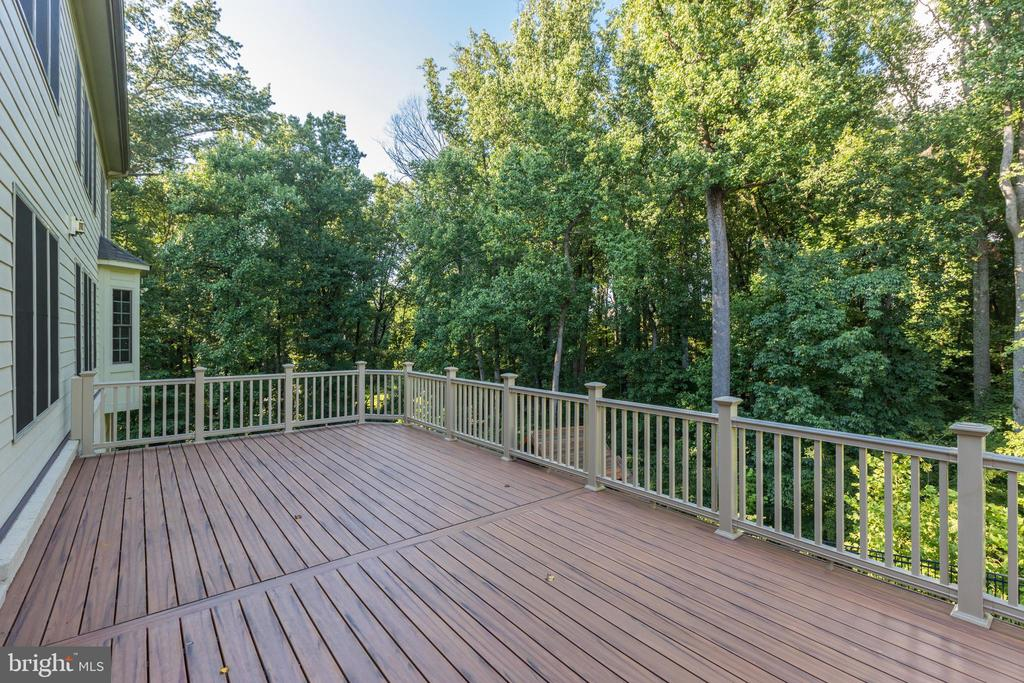 Private - Backs to Trees - 1351 BLAIRSTONE DR, VIENNA