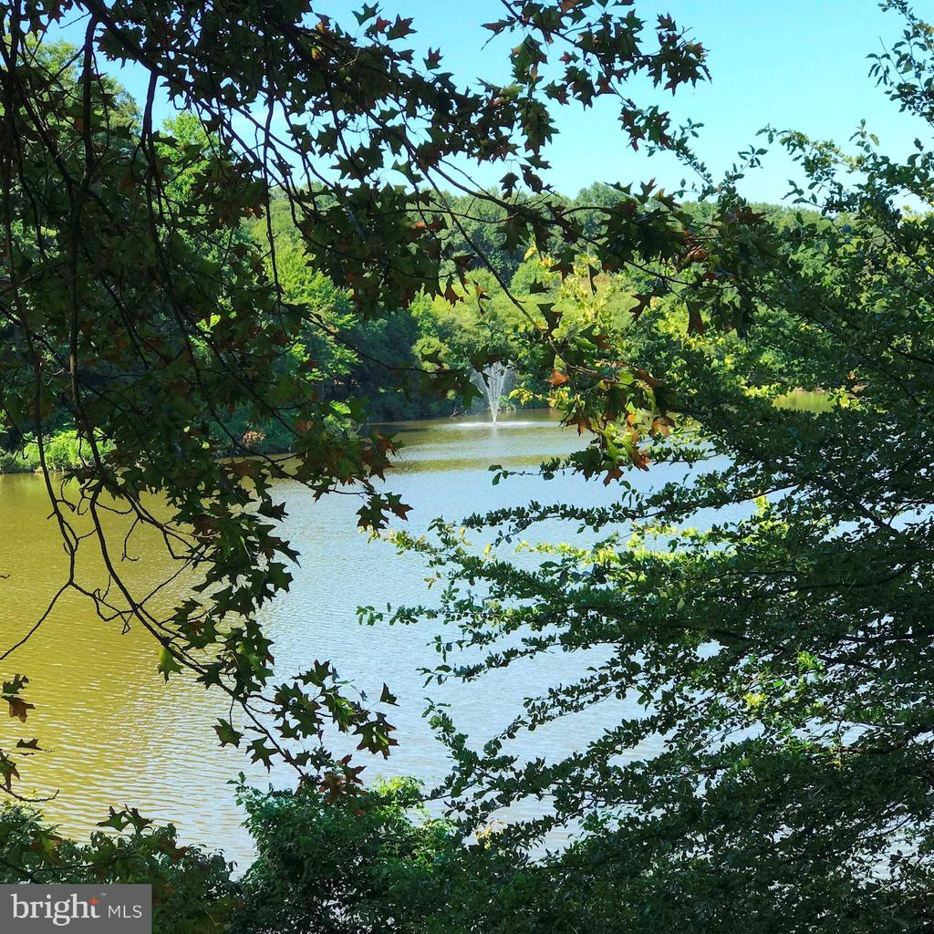 Enjoy the Serenity that Fairview Park Lake Offers! - 7758 NEW PROVIDENCE DR #10, FALLS CHURCH