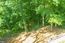 Bird watchers paradise - 10832 MIDDLEBORO DR, DAMASCUS