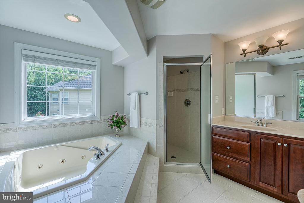 Luxury Master with Sep Tub and Over-Sized Shower - 5 ABRAHAM CT, STAFFORD