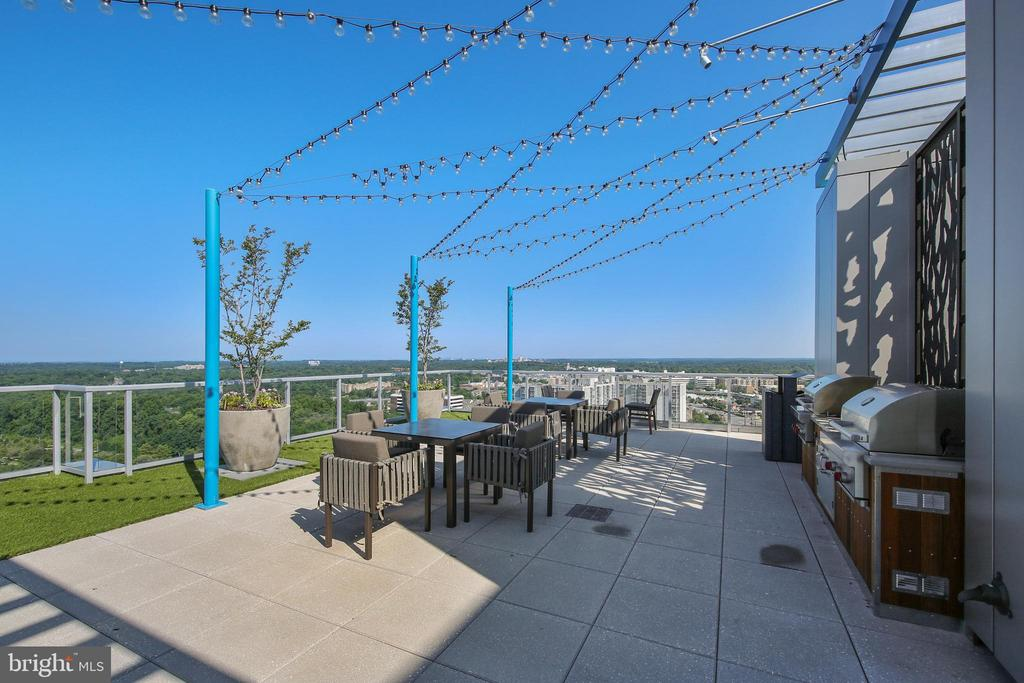 Rooftop Entertainment and Dining Space. - 930 ROSE AVE #1101, NORTH BETHESDA