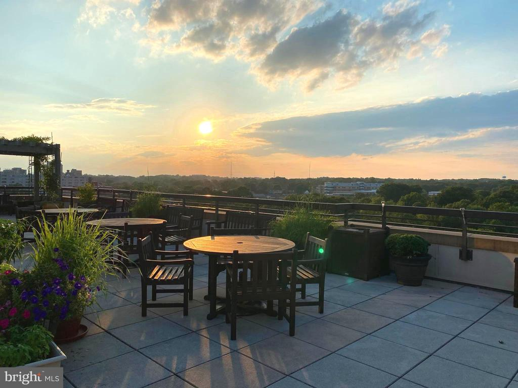 Roof top view at sunset - 3625 10TH ST N #408, ARLINGTON