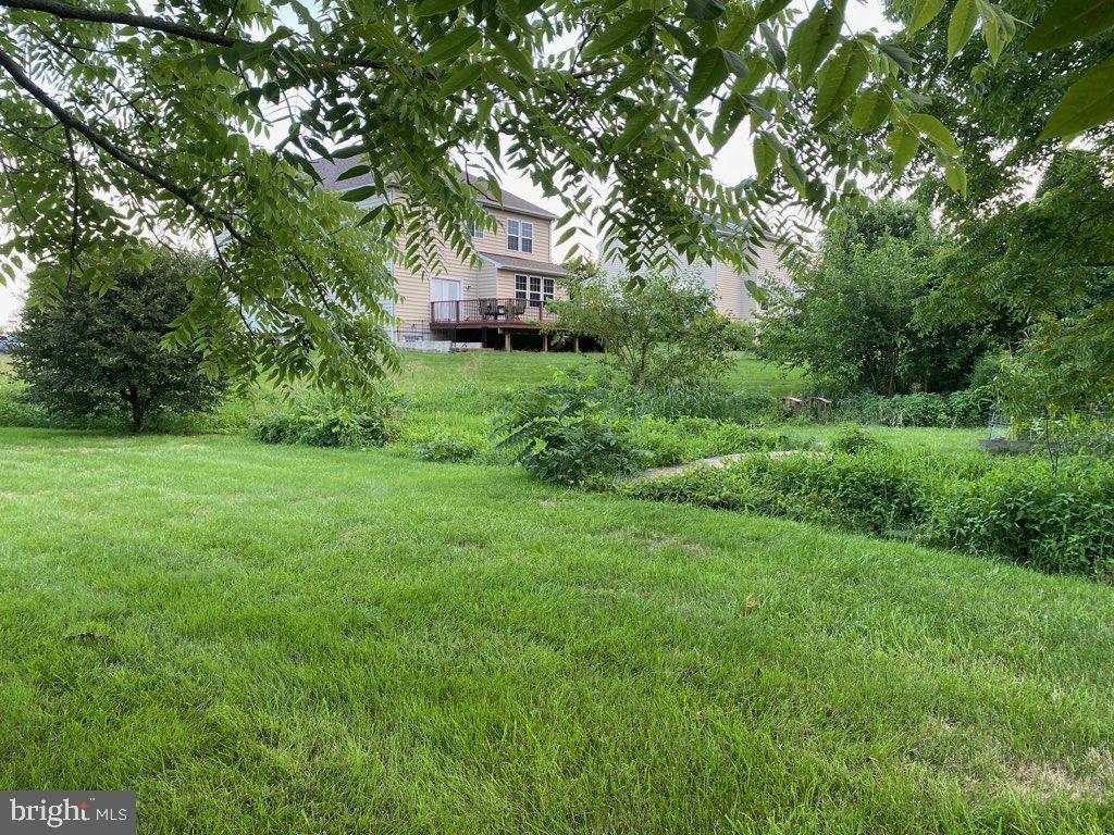 View to Back of Home - 15607 GREAT BRIDGE LN, CULPEPER