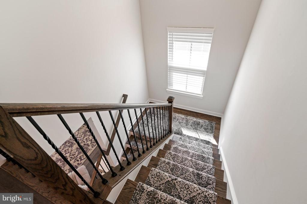 Let's go downstairs - 17429 SPRING CRESS DR, DUMFRIES