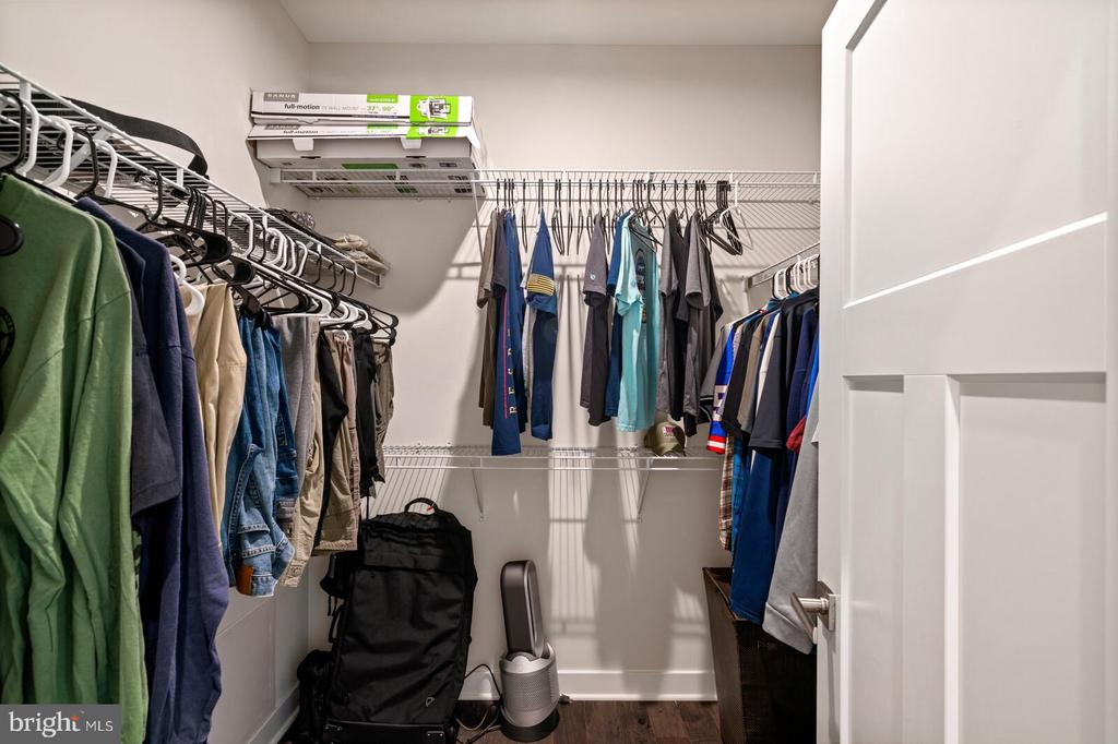 Owners closet - 17429 SPRING CRESS DR, DUMFRIES