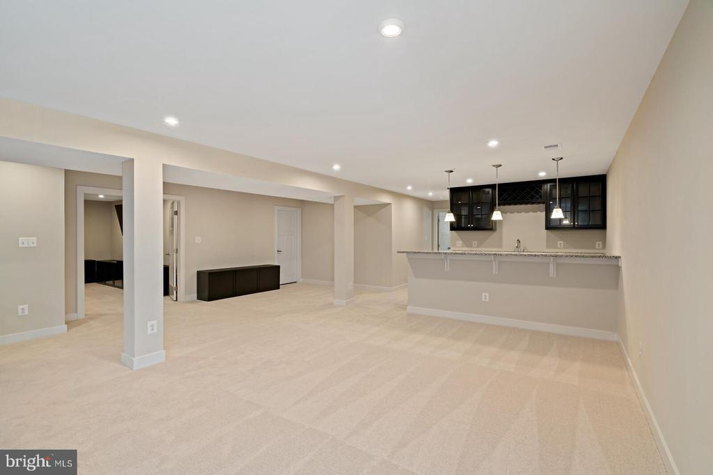 The rec room - 17429 SPRING CRESS DR, DUMFRIES