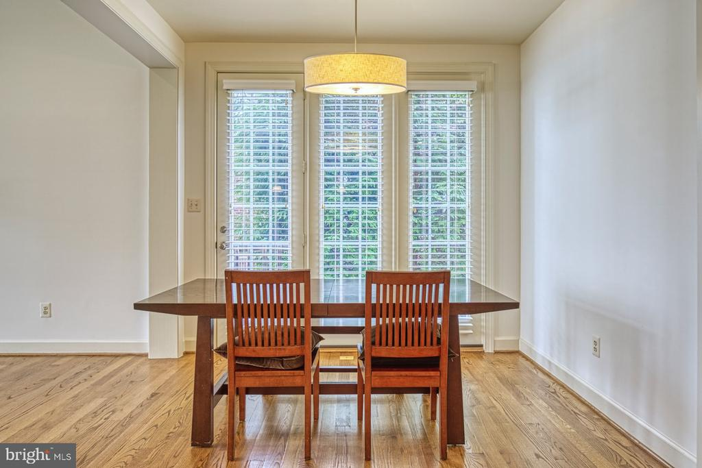 Big, Beautiful High-Quality Windows Throughout - 42439 MERIDIAN HILL DR, BRAMBLETON