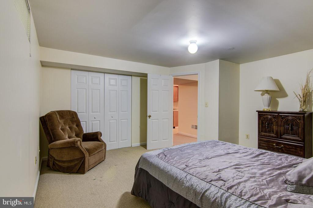 Basement 5th Bedroom - 10303 WAVERLY WOODS DR, ELLICOTT CITY