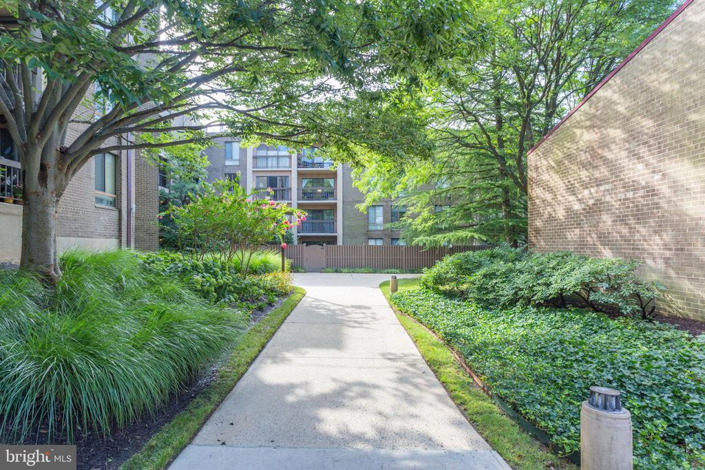 Nicely landscaped and well-maintained grounds - 805 N HOWARD ST #336, ALEXANDRIA