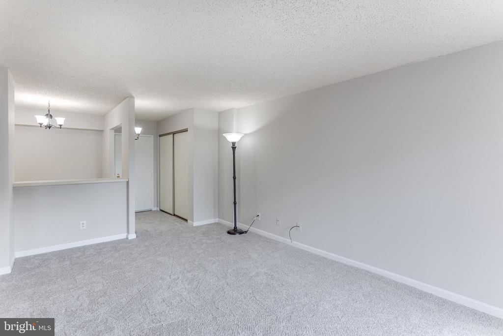 Living room looking toward front entrance - 805 N HOWARD ST #336, ALEXANDRIA