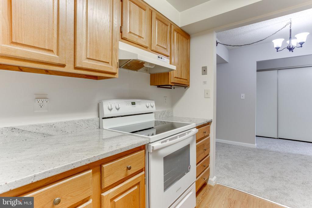 Lovely granite counters in kitchen - 805 N HOWARD ST #336, ALEXANDRIA