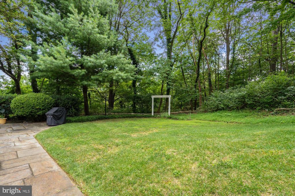 Spacious side yard accessed from the Family Room - 2747 N NELSON ST, ARLINGTON