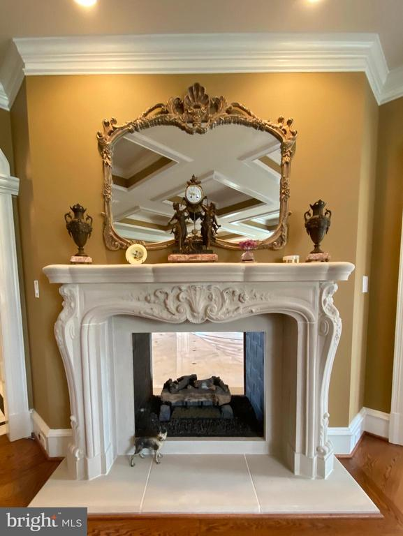 Parlor's matching two sided fireplace - 40483 GRENATA PRESERVE PL, LEESBURG