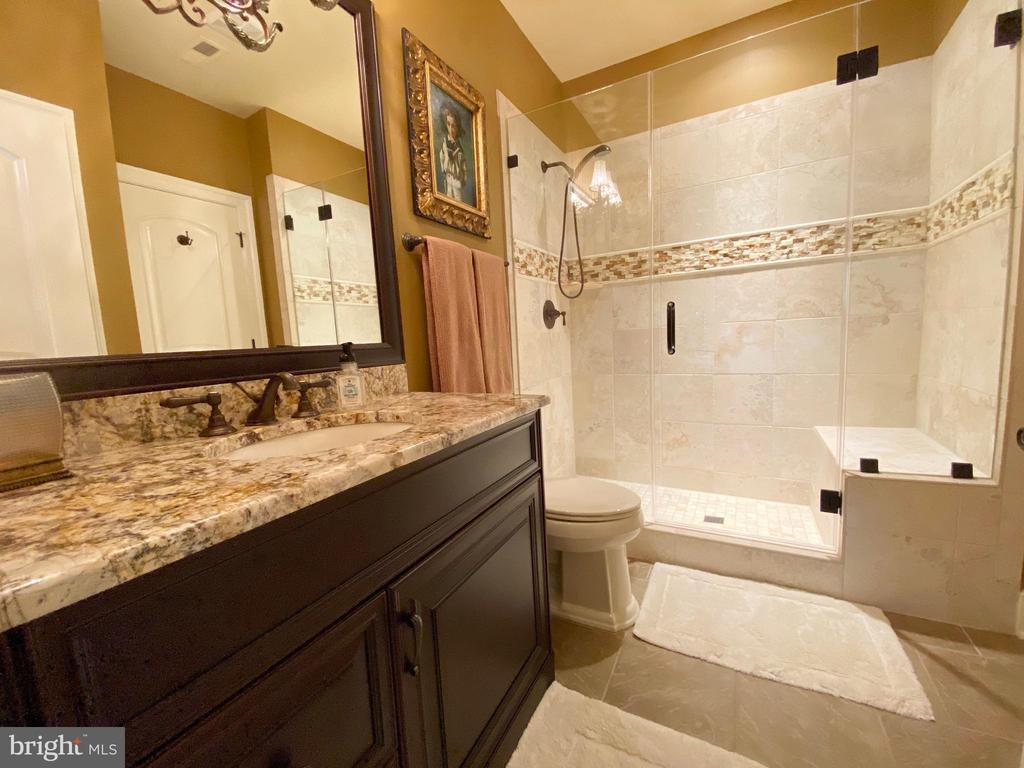 Lower level en-suite bath - 40483 GRENATA PRESERVE PL, LEESBURG