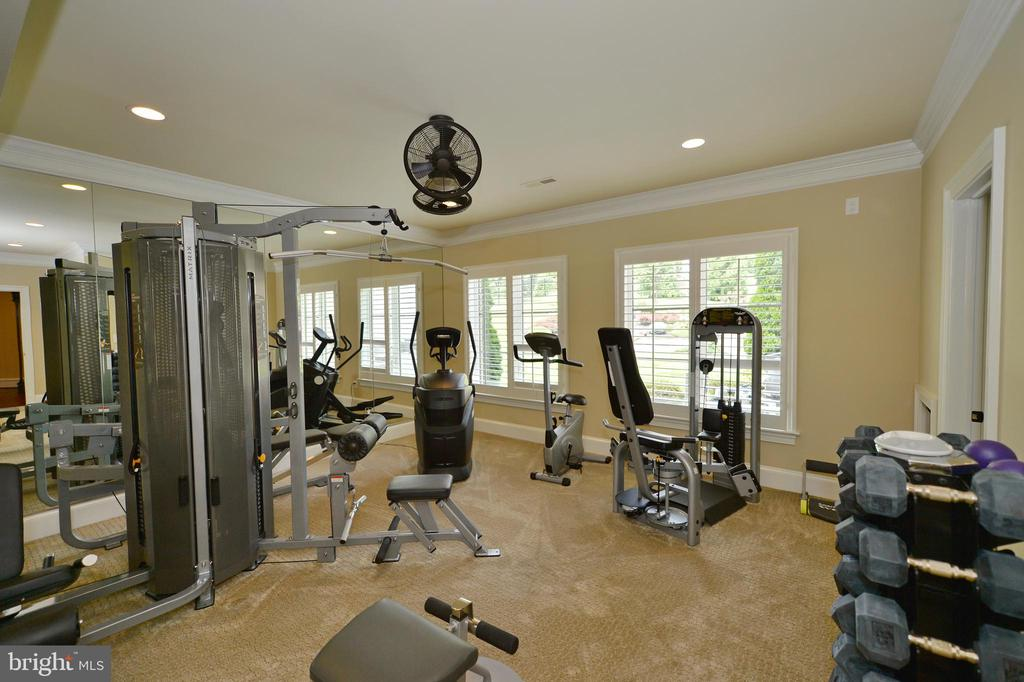 Lower level exercise room - 40483 GRENATA PRESERVE PL, LEESBURG