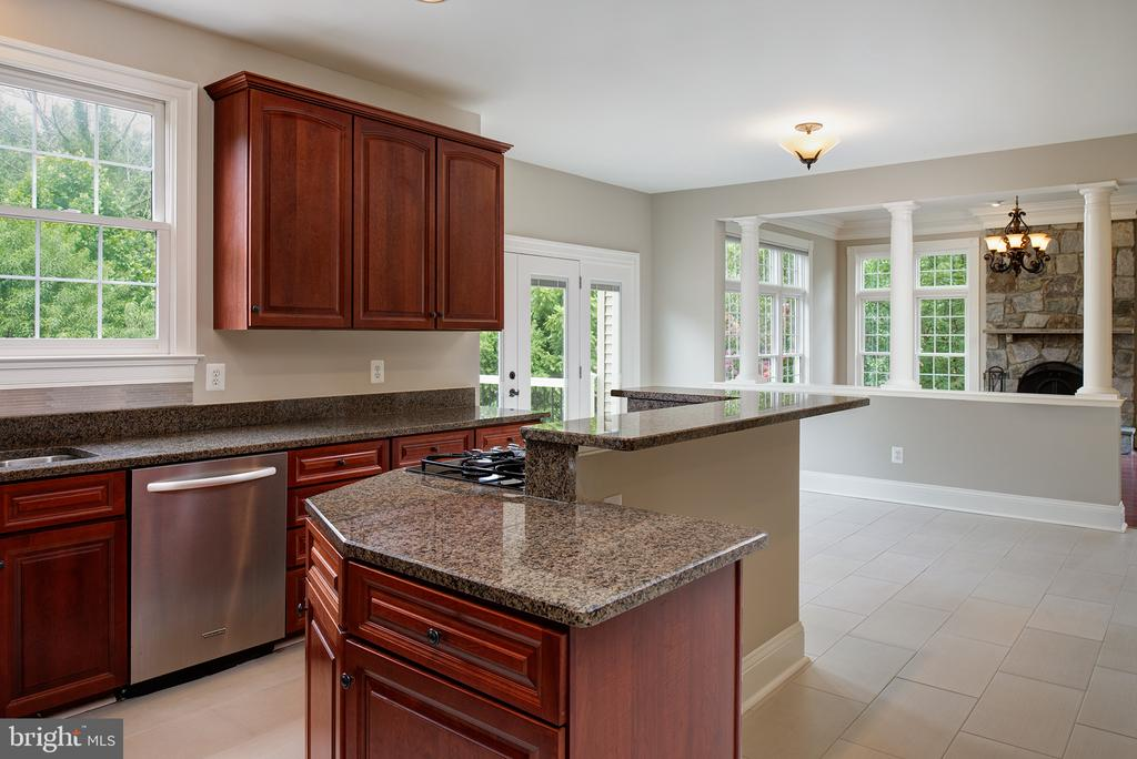 Hi-end kitchen ready for the chef in you! - 42428 HOLLY KNOLL CT, ASHBURN