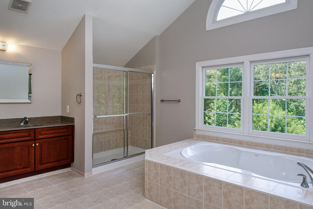 Vaulted Ceiling, Separate Shower and Soaking Tub - 42428 HOLLY KNOLL CT, ASHBURN