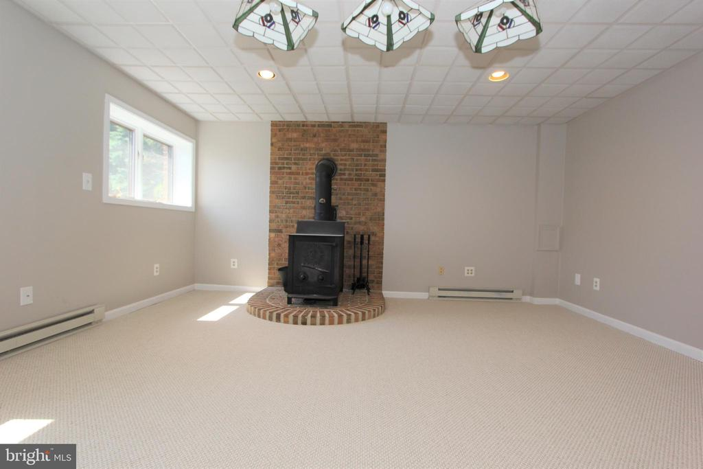 Lower level recreation room with new carpet - 5520 BOOTJACK DR, FREDERICK