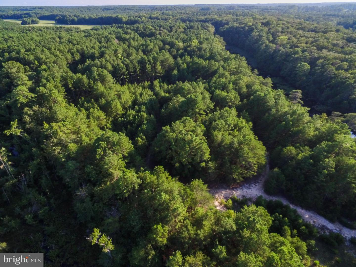 Land for Sale at Heathsville, Virginia 22473 United States