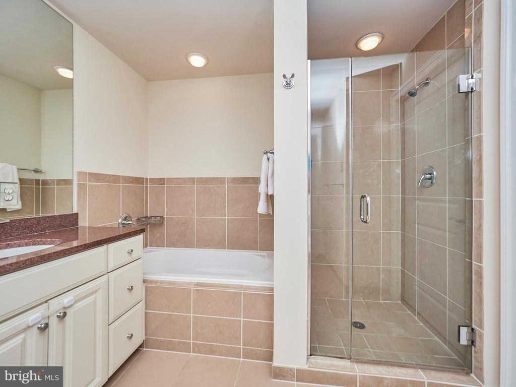 Master Bath w/ Soaking Bath & Shower - 3625 10TH ST N #408, ARLINGTON
