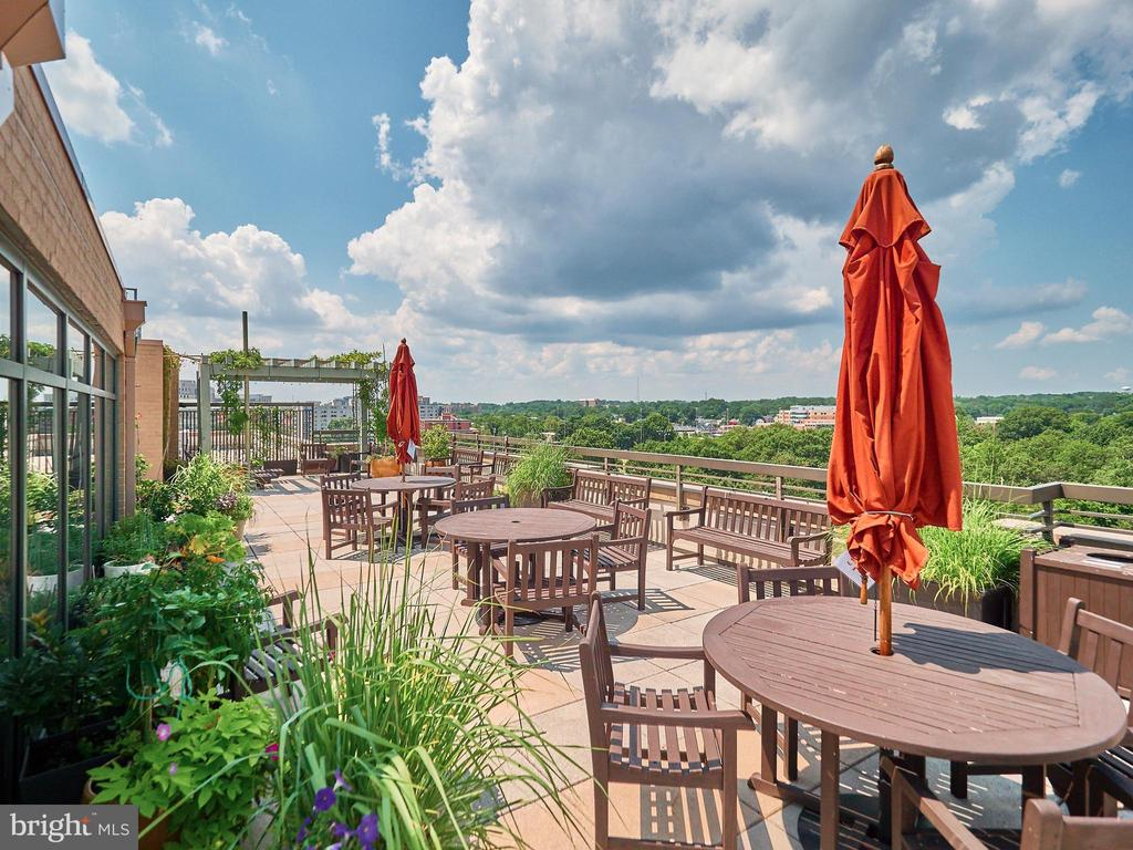 Roof top Patio for relaxing, grilling & views - 3625 10TH ST N #408, ARLINGTON