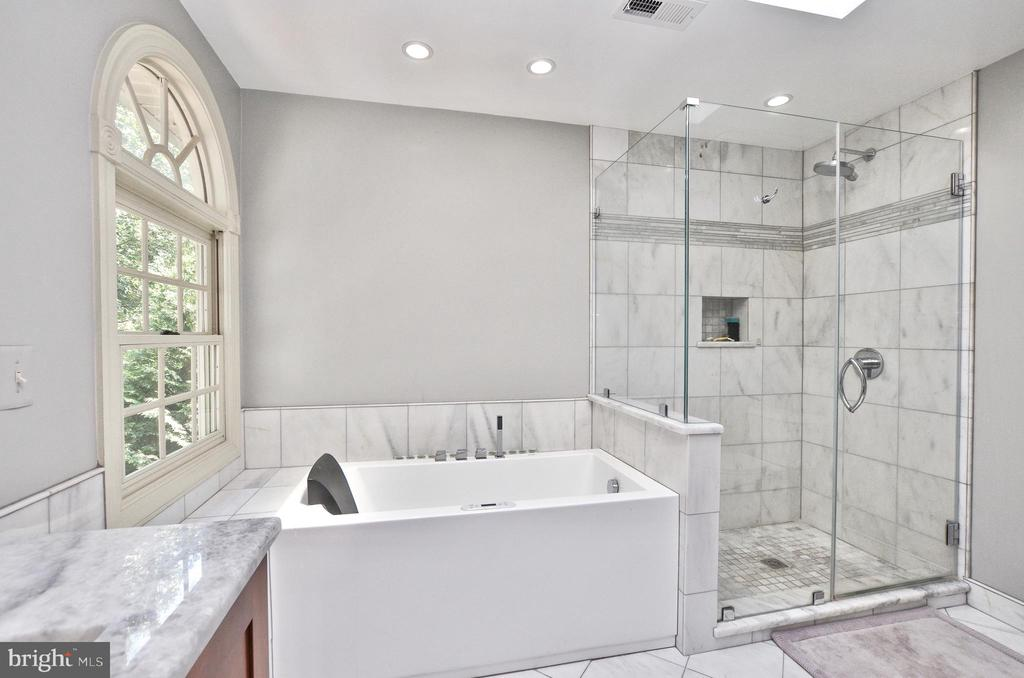 Awesome owners suite bathroom - 20592 CUTWATER PL, STERLING
