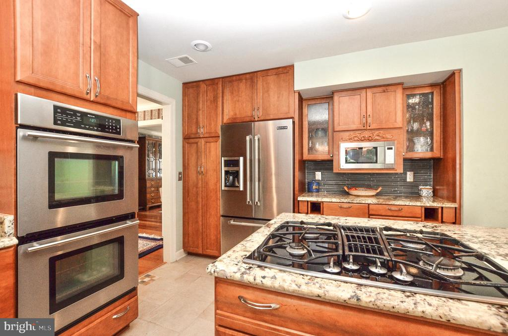 Renovated kitchen with granite and s/s - 20592 CUTWATER PL, STERLING