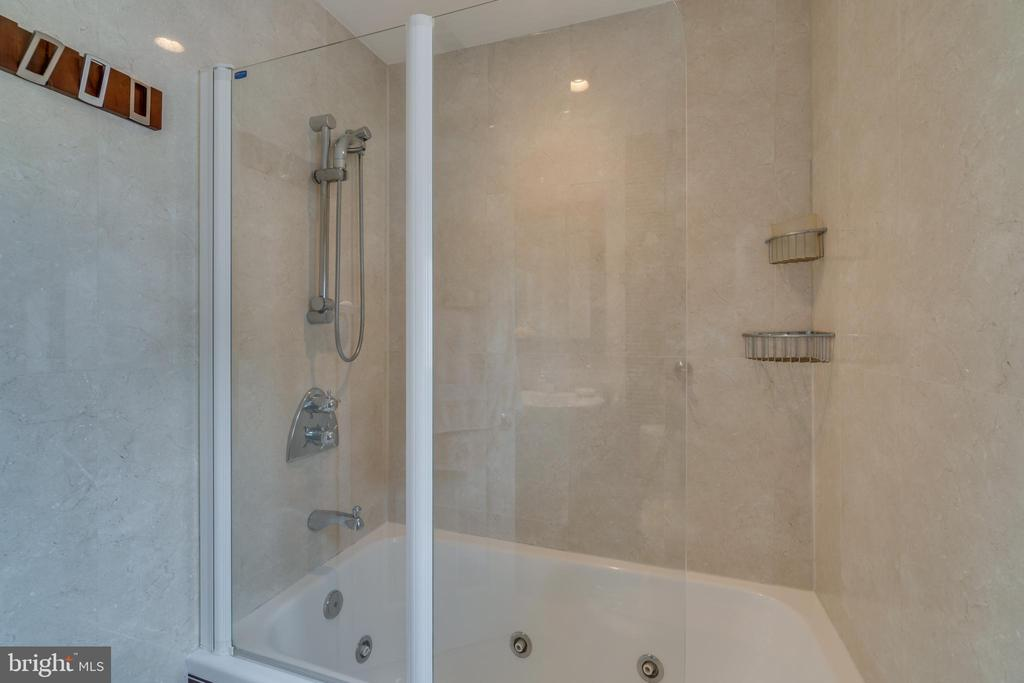 Upstairs jacuzzi tub with shower. Groehe fixtures. - 13814 ALDERTON RD, SILVER SPRING
