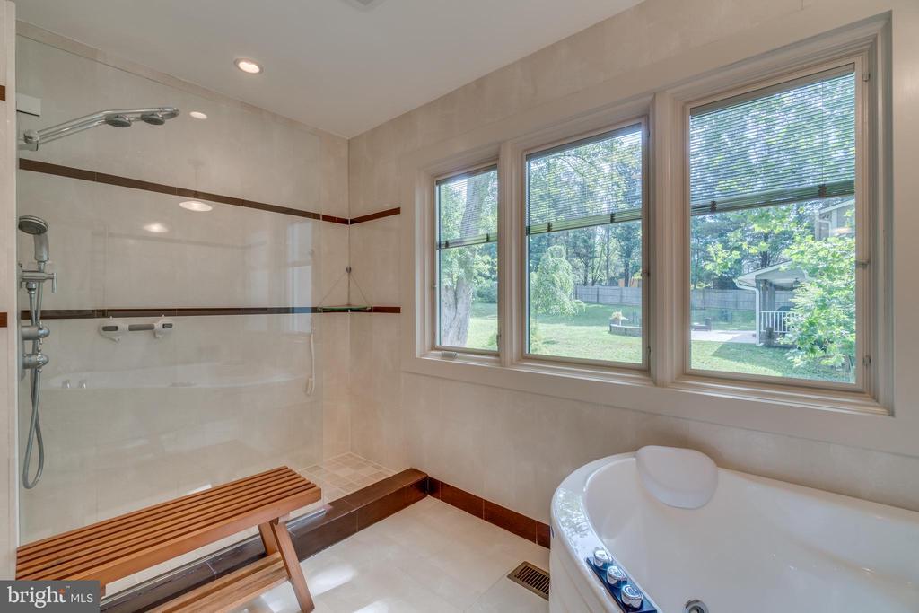 Elegant European shower with Groehe fixtures. - 13814 ALDERTON RD, SILVER SPRING